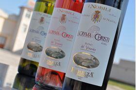 Box 6 bottiglie Lacryma Christi D.O.C del Vesuvio 2X rosato 2X bianco 2X rosso